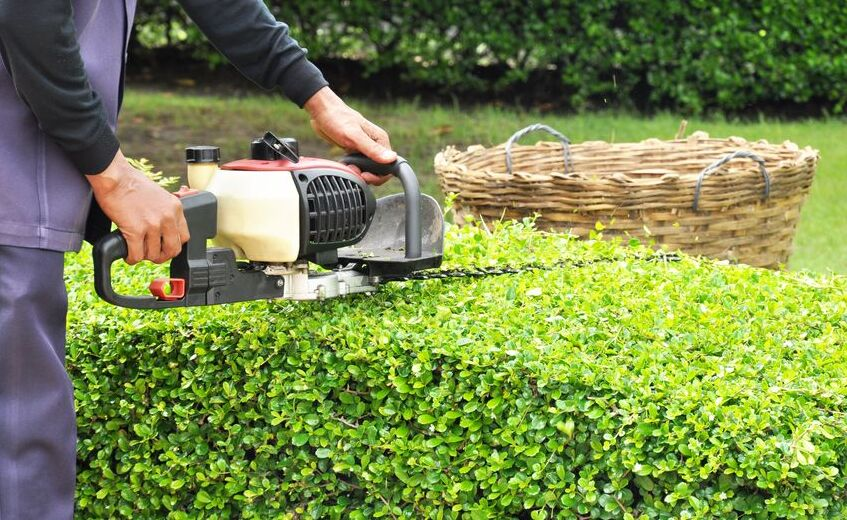 How much are the hedge cutting prices in the UK?